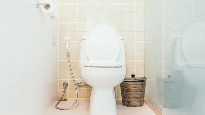 Toilets 101